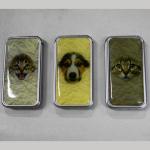 FZ Turbo Dogs&Cats
