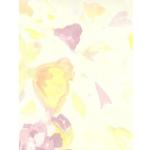 Geschenk-Offset 70x100cm