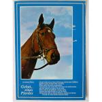 Karten Pferde